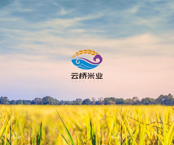 泰来大米-云桥米业品牌与包装设计