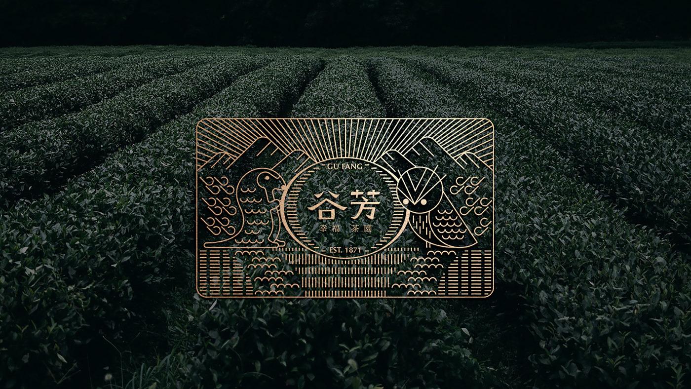 北京包装设计|有机茶品牌与包装设计